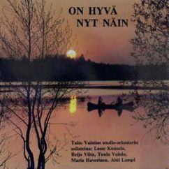 Various Artists: On Hyvä Nyt Näin