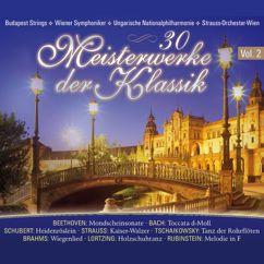 Various Artists: 30 Meisterwerke der Klassik, Vol. 2