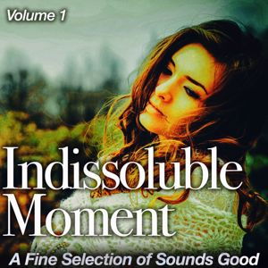 Various Artists: Indissoluble Moment, Vol. 1
