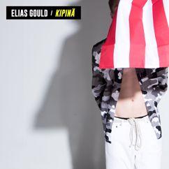 Elias Gould: Kipinä