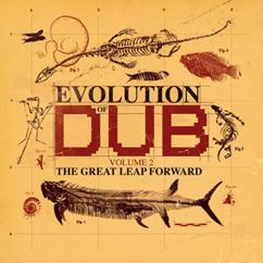 Various Artists: Evolution Of Dub Vol 2-The Great Leap Forward