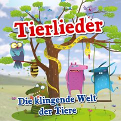 Various Artists: Tierlieder