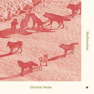 Chantal Acda: Wolfmother