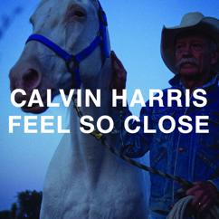 Calvin Harris: Feel So Close