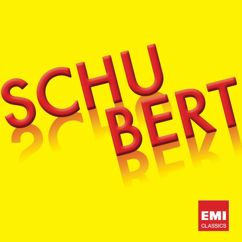 Various Artists: SCHUBERT