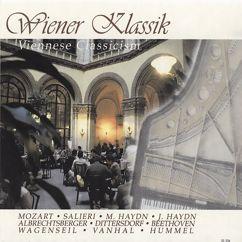 Various Artists: Wiener Klassik