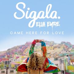 Sigala & Ella Eyre: Came Here for Love