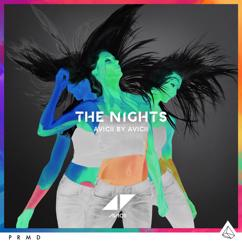 Avicii: The Nights
