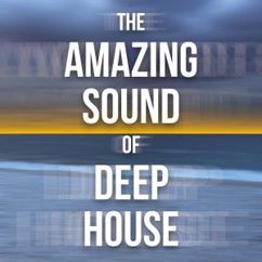 Various Artists: The Amazing Sound of Deep House