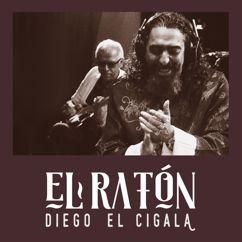 Diego El Cigala: El Ratón