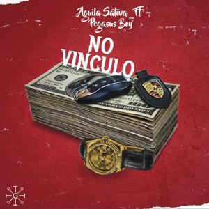 Aguila Sativa: No Vinculo (feat. Pegasus Boy)