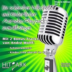 Andre Wolff: Hitpark Edition, Vol. 2