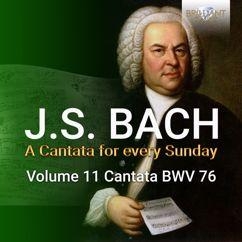 Netherlands Bach Collegium, Pieter Jan Leusink & Knut Schoch: Die Himmel erzählen die Ehre Gottes, BWV 76: II. Recitativo. So läßt sich Gott (Tenore)