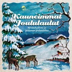 The Candomino Choir, Tauno Satomaa: Joulupuu on rakennettu