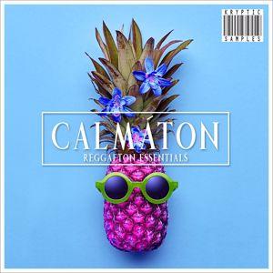 Kryptic: Calmaton by Kryptic Samples
