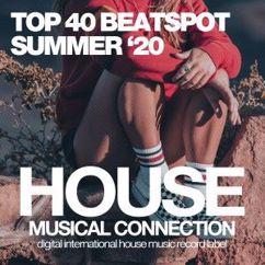 Various Artists: Top 40 Beatspot Summer '20