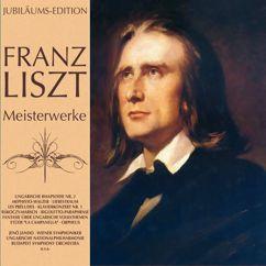 Various Artists: Franz Liszt Meisterwerke