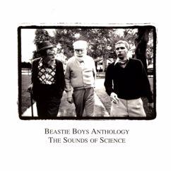 Beastie Boys: Three MC's And One DJ