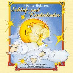 Various Artists: Schlaf - und Kinderlieder