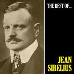 Jean Sibelius: Symphony No. 2 in D Major, Op. 43: II. Tempo Andante, Ma Rubato (Remastered)