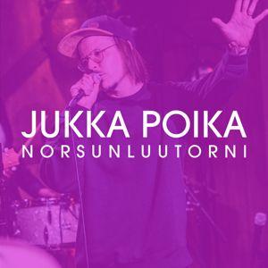 Jukka Poika: Norsunluutorni (Vain elämää kausi 12)