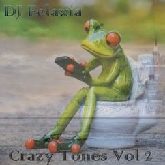 DJ Felaxia: Crazy Tones, Vol. 2