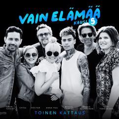 Lauri Tähkä: Vaiettu rakkaus (Vain elämää kausi 5)