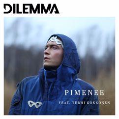 Dilemma, Terhi Kokkonen: Pimenee (feat. Terhi Kokkonen)