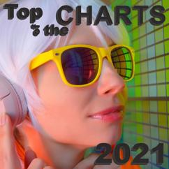 Various Artists: Top of the Charts 2021