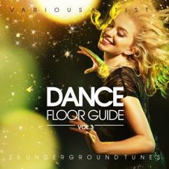 Various Artists: Dance Floor Guide (25 Underground Tunes), Vol. 3