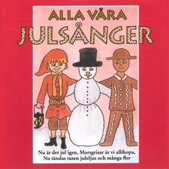 Various Artists: Alla våra julsånger