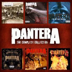 Pantera: Floods