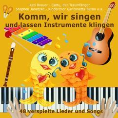 Various Artists: Komm, wir singen und lassen Instrumente klingen (48 verspielte Lieder und Songs)