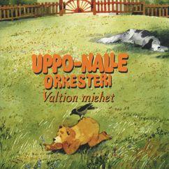 Uppo-Nalle Orkesteri: Valtion miehet