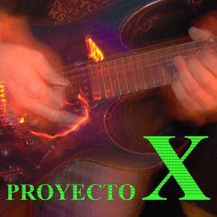 Javi Bustos: Proyecto X