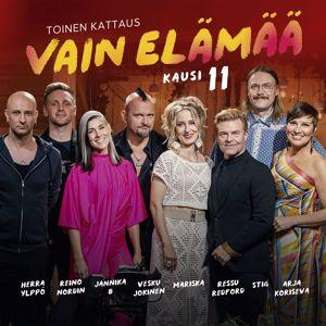 Various Artists: Vain elämää kausi 11 - Toinen kattaus