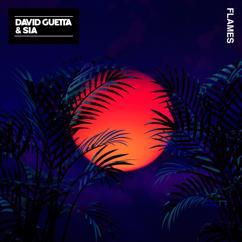 David Guetta, Sia: Flames