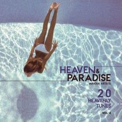 Various Artists: Heaven & Paradise, Vol. 4 (20 Heavenly Tunes)