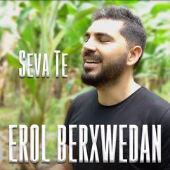 Erol Berxwedan: Seva Te