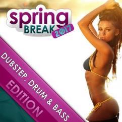 Various Artists: Springbreak 2017: Dubstep, Drum & Bass Edition