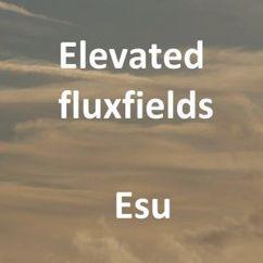 Elevated Fluxfields: Esu
