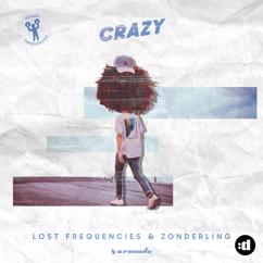 Lost Frequencies & Zonderling: Crazy