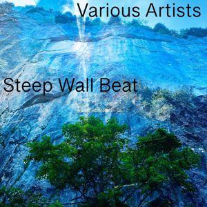 Various Artists: Steep Wall Beat