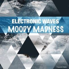 Various Artists: Electronic Waves Moody Madness
