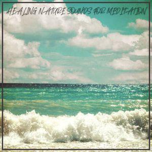 Various Artists: Healing Nature Sounds for Meditation