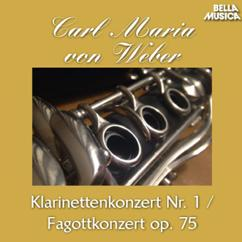 Württembergisches Kammerorchester, Jörg Faerber, David Glazer: Klarinettenkonzert No. 1 in F Minor, Op. 73: II. Adagio ma non troppo
