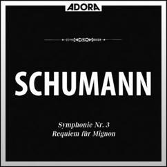 Bamberger Symphoniker, Robert Heger, Chor des Konservatoriums Innsbruck, Robert Wagner: Schumann: Symphonie No. 3, Op. 97 - Requiem für Mignon
