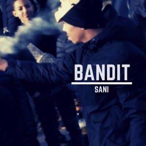 Sani: Bandit