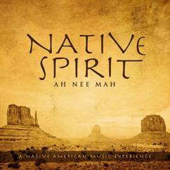 Ah Nee Mah: Native Spirit: A Native American Music Experience
