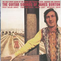 James Burton: Polk Salad Annie